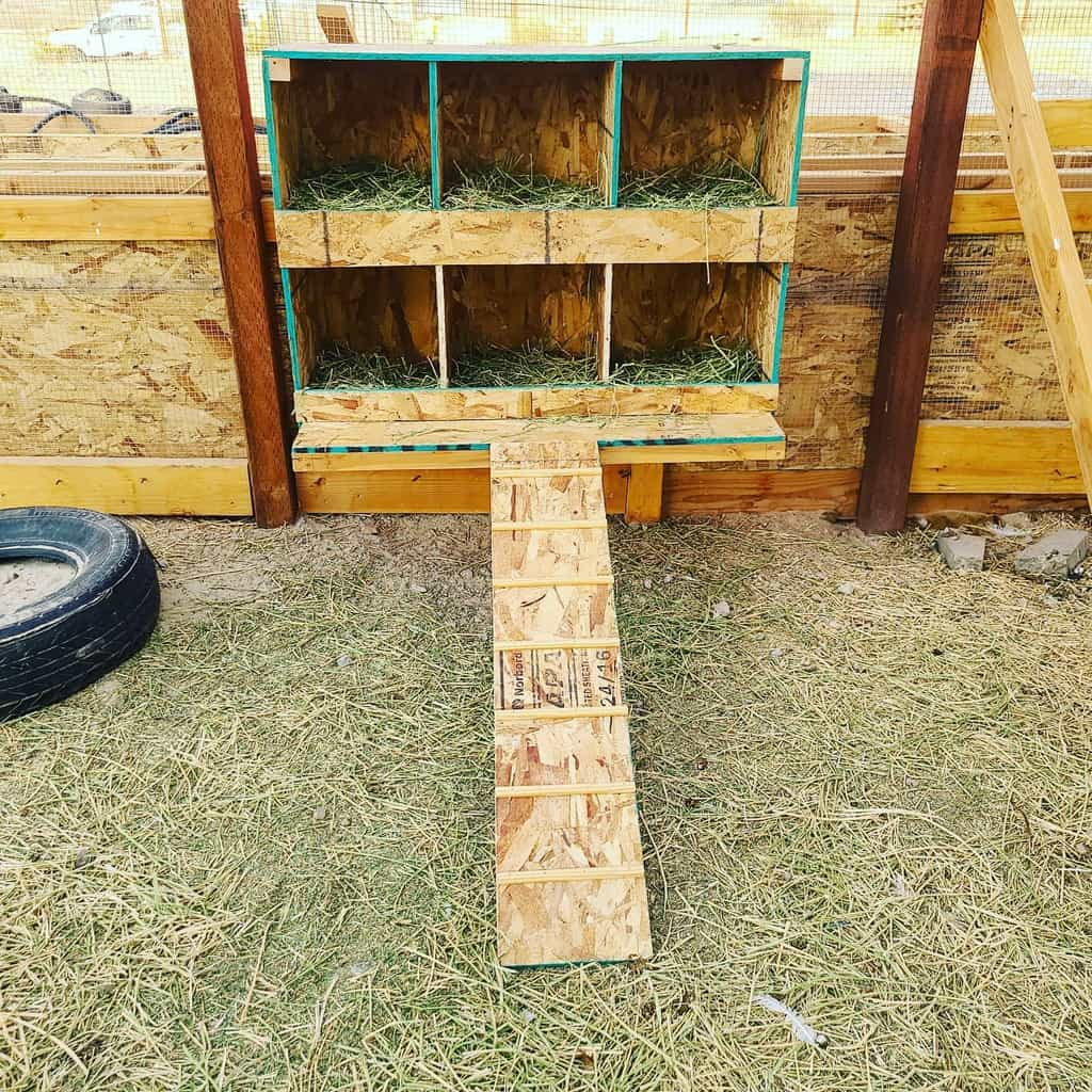 nesting box chicken coop ideas lone_rooster_homestead