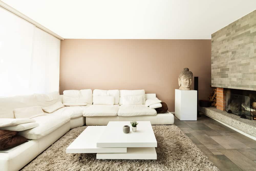 Neutral Minimalist Living Room 4