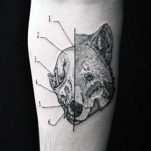 Numbered Wolf Skull Mens Forearm Tattoo