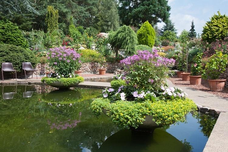 Ornamental Garden With Beautiful Pond