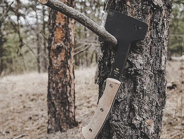 Outdoor Woods Review Buck Knives Compadre Camp Axe