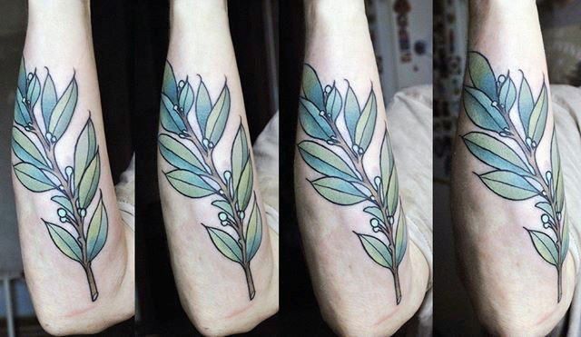 Outer Forearm Male Olive Branch Tattoo Ideas