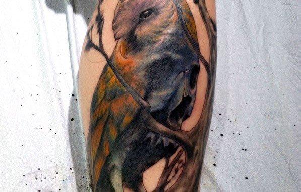 Owl Skull Guys Tattoos
