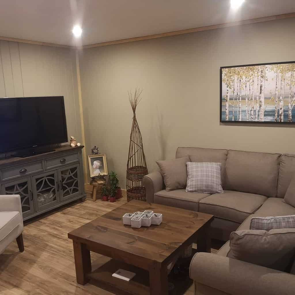 painted basement wall ideas pastimegardens