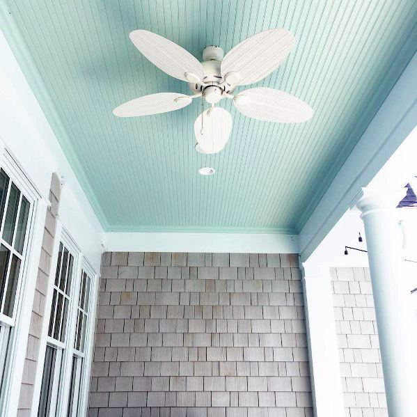 Painted Light Blue Traditional Porch Ceiling Ideas