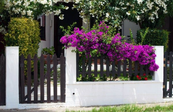 Painted Picket Designs Front Yard Fence