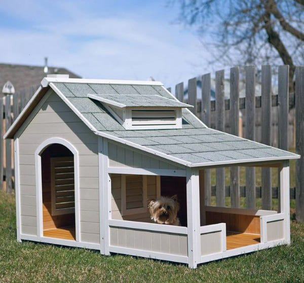 Painted Wood Cool Dog Houses