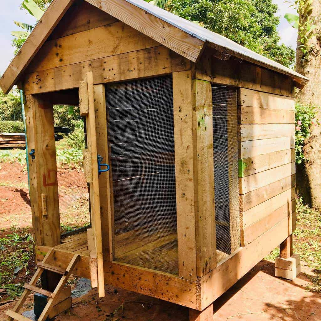 pallet chicken coop ideas flying.sawdust