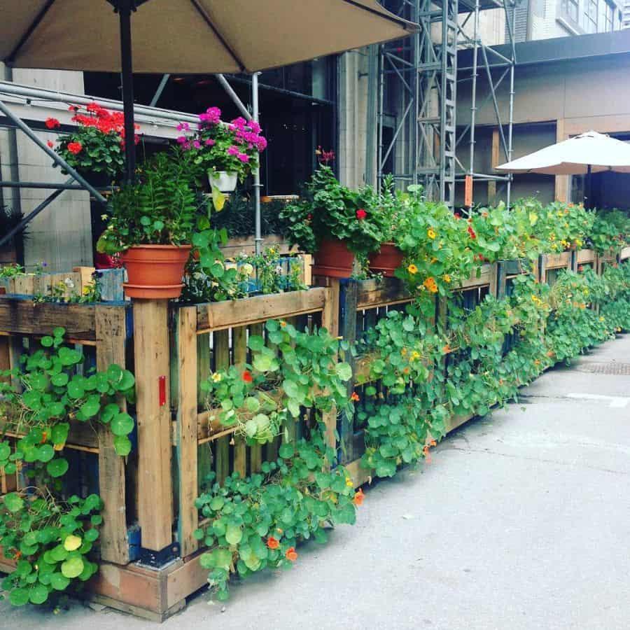 pallet fence garden ideas vitalonga