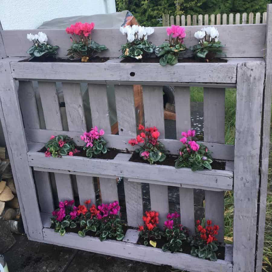 pallet flower box garden ideas beccascotland