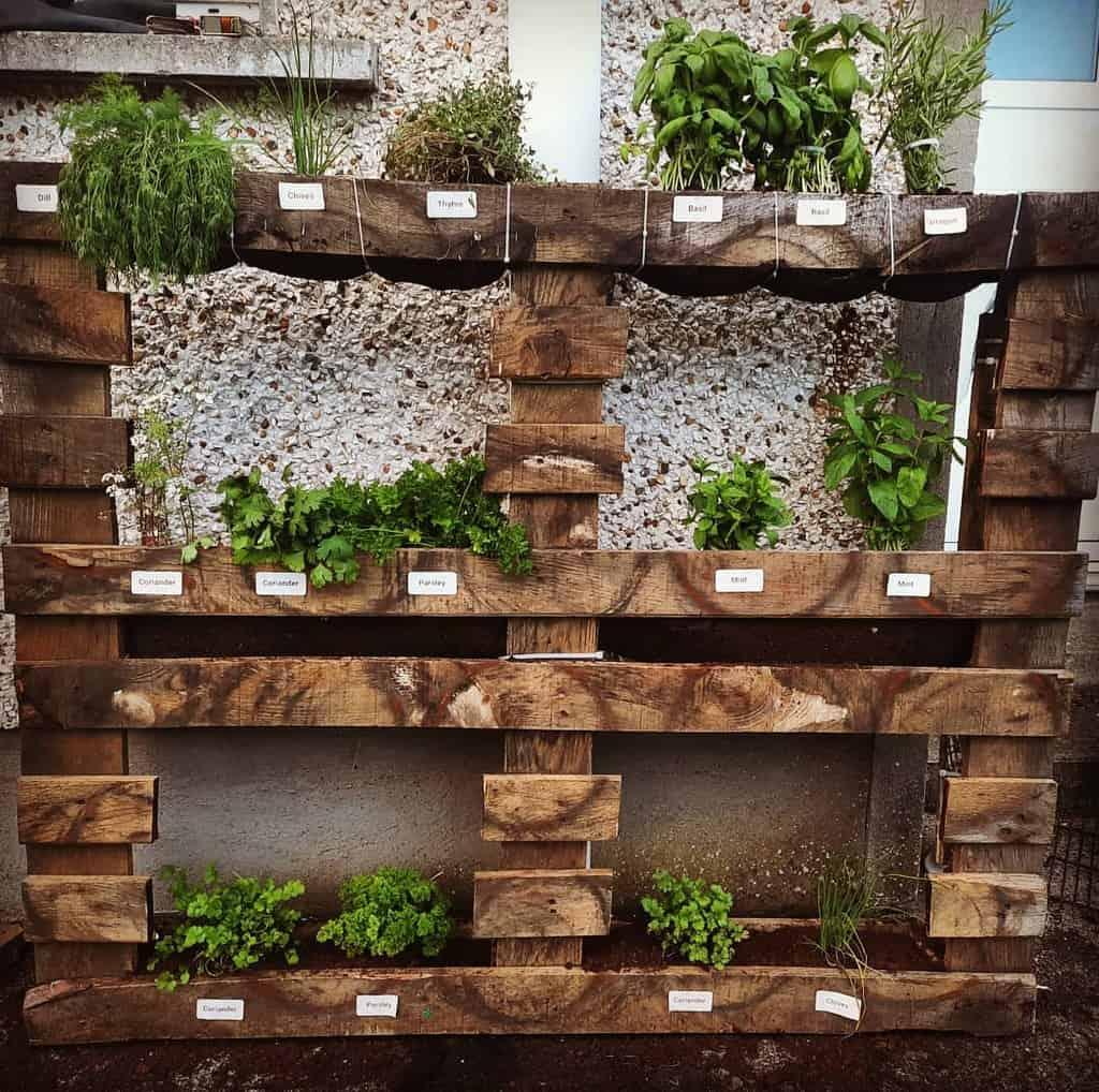 pallet herb garden ideas streetfooddonegood