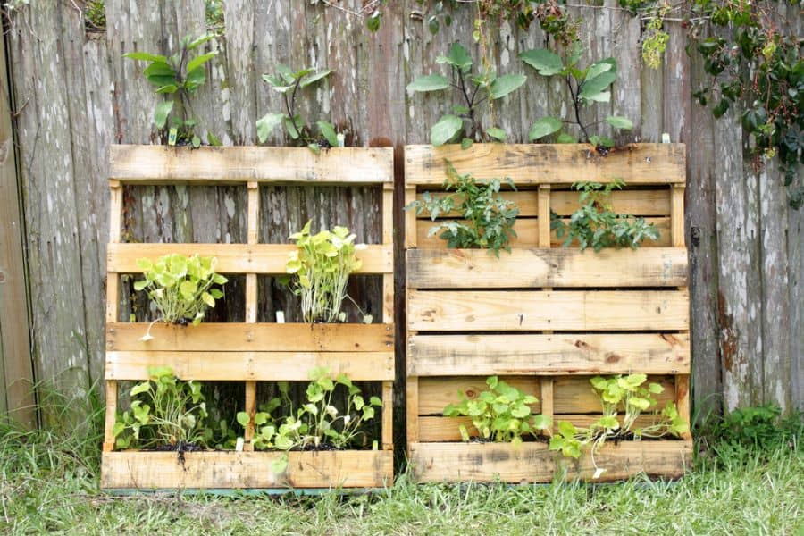 pallet vertical garden ideas 2