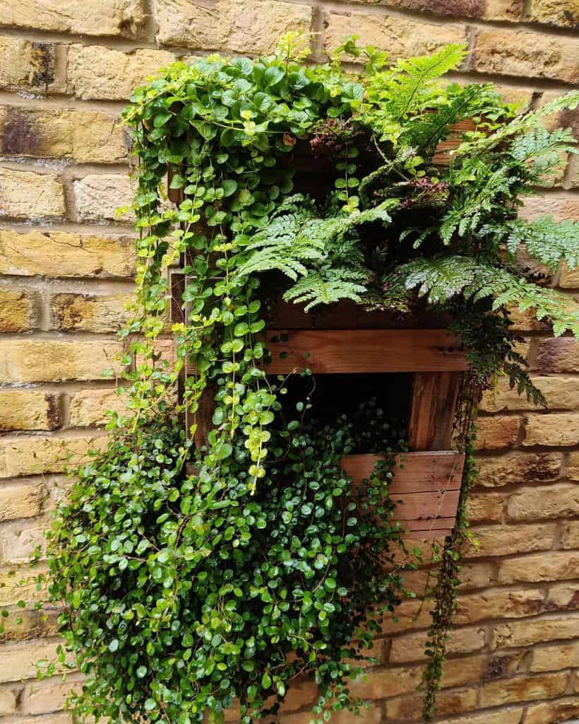 pallet vertical garden ideas benmagnussen