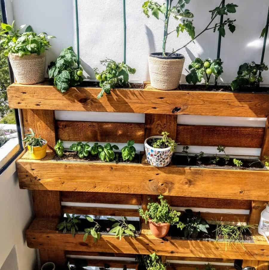pallet vertical garden ideas solution_meum