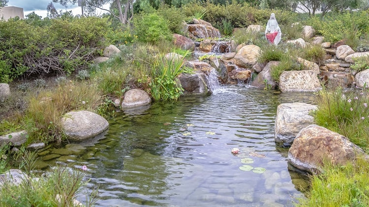 Panorama Small Waterfall Or Cascade In A Landscaped Garden