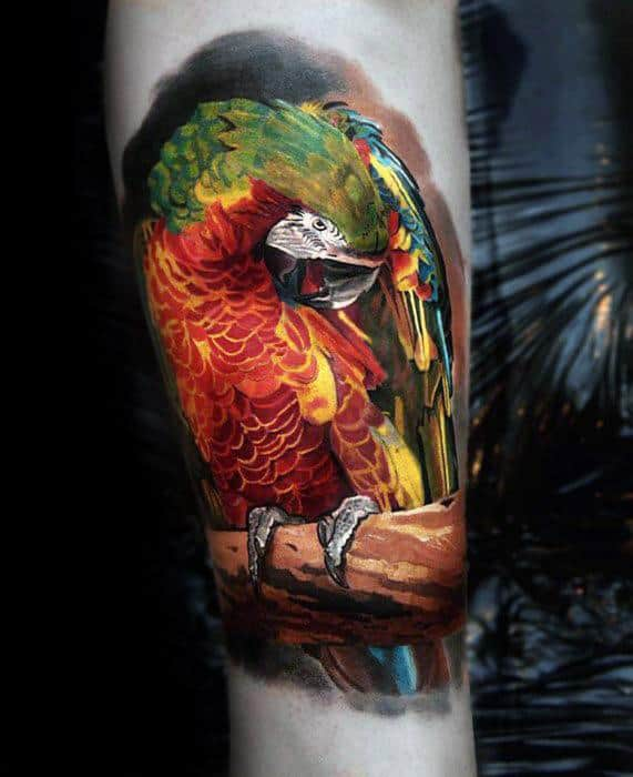 Parrot 3d Realistic Forearm Tattoo Ideas On Guys