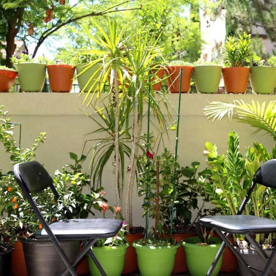 patio container garden ideas seema.patel.98284