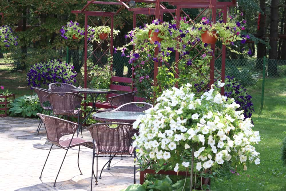 patio flower garden flower garden ideas 4