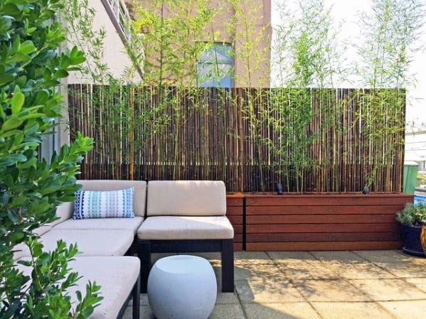 Patio Luxury Bamboo Fence Ideas