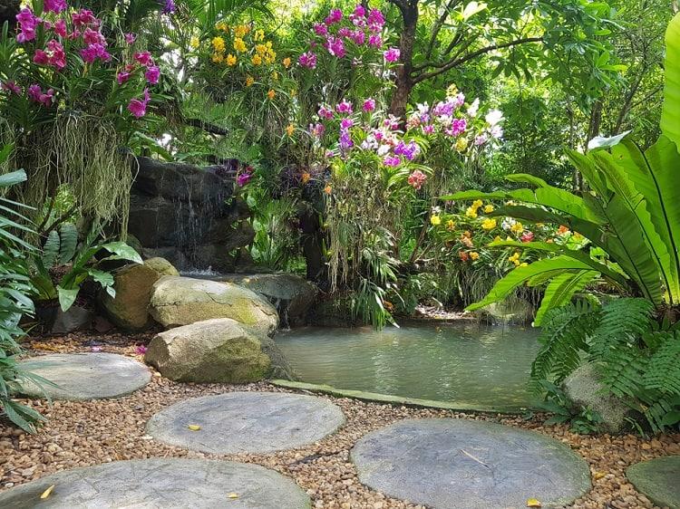 Peaceful Orchid Backyard Garden Pond