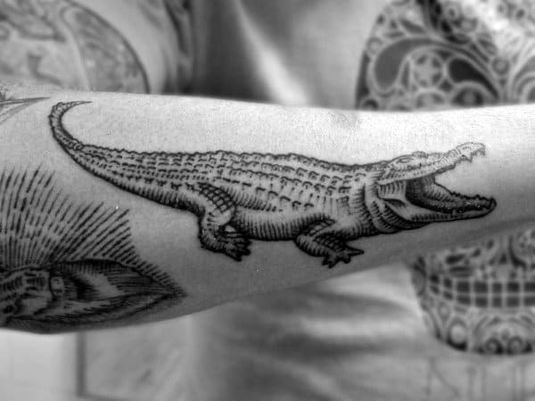 Pencil Art Alligator Tattoo Men On Arms