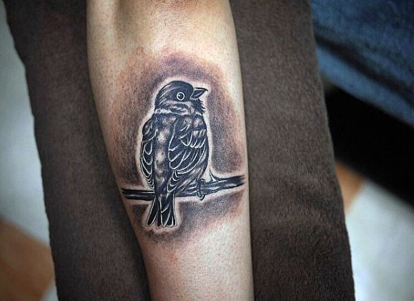 Pencil Shaded Sparrow Tattoos Forearms Men
