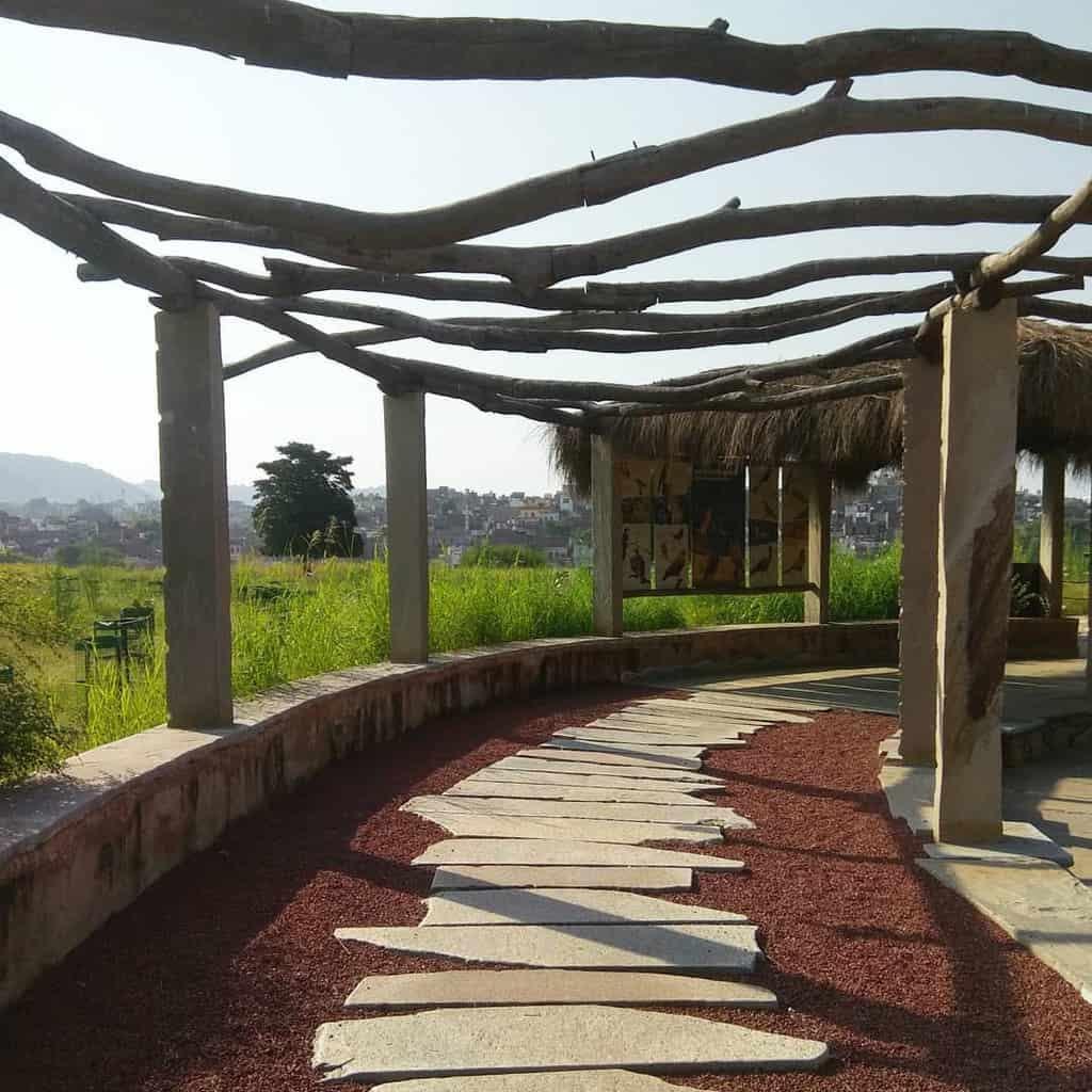pergola garden trellis ideas ay_shjain