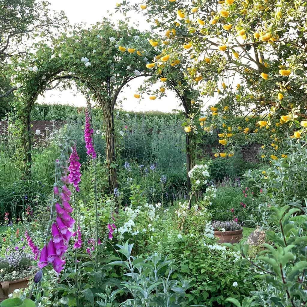 pergola garden trellis ideas townplacegarden