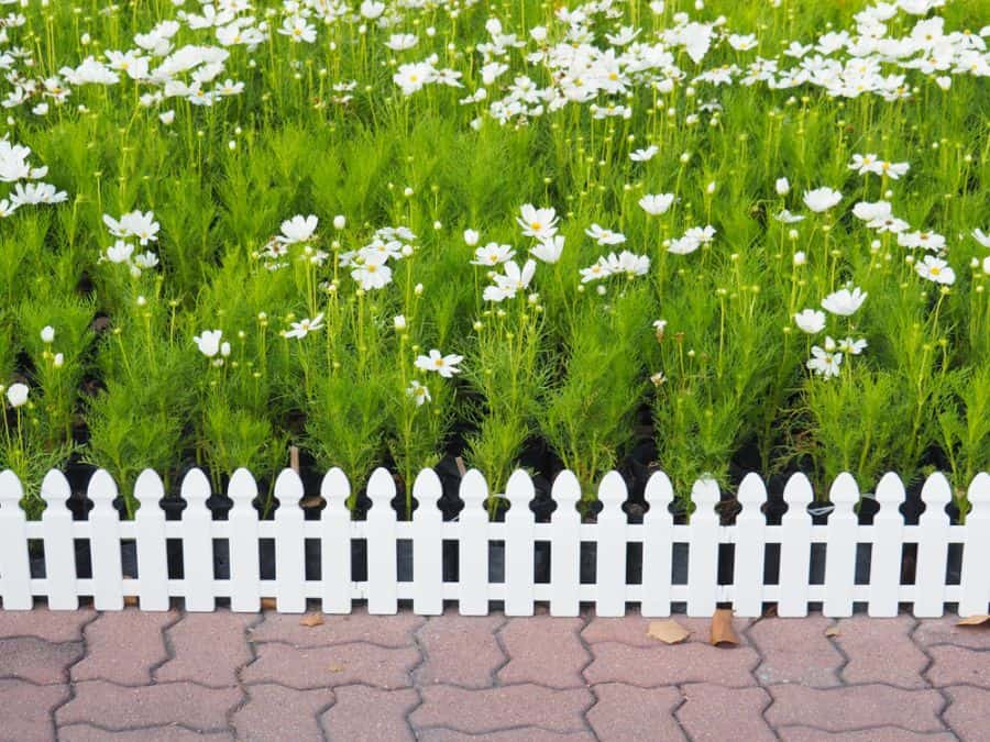 Picket Fence Wood Fence Ideas (3)