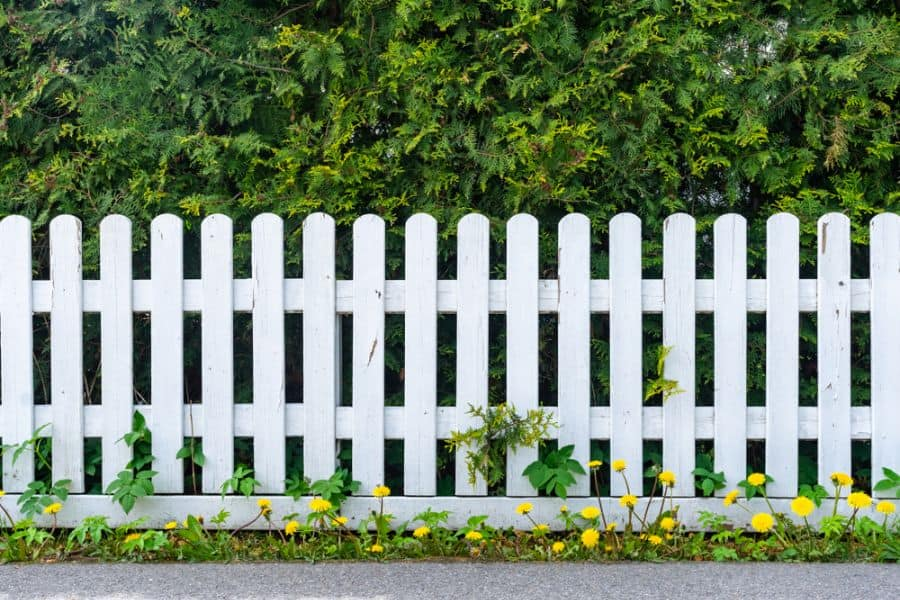 Picket Fence Wood Fence Ideas (4)