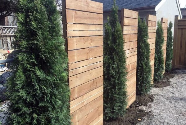 Pine Tree And Wood Panels Luxury Privacy Fence