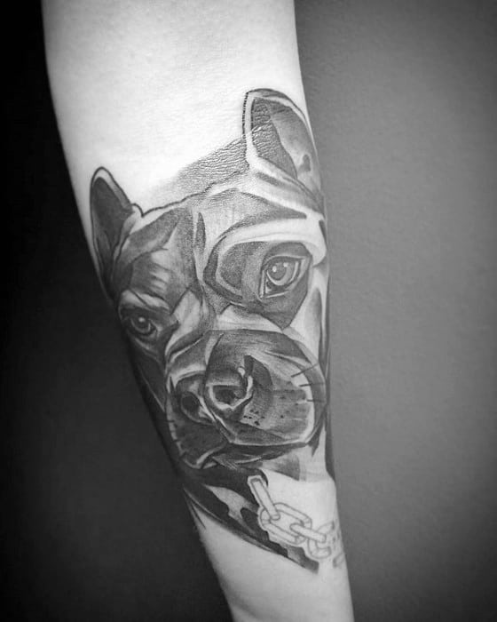 Pitbull Tattoo Design On Mans Forearm