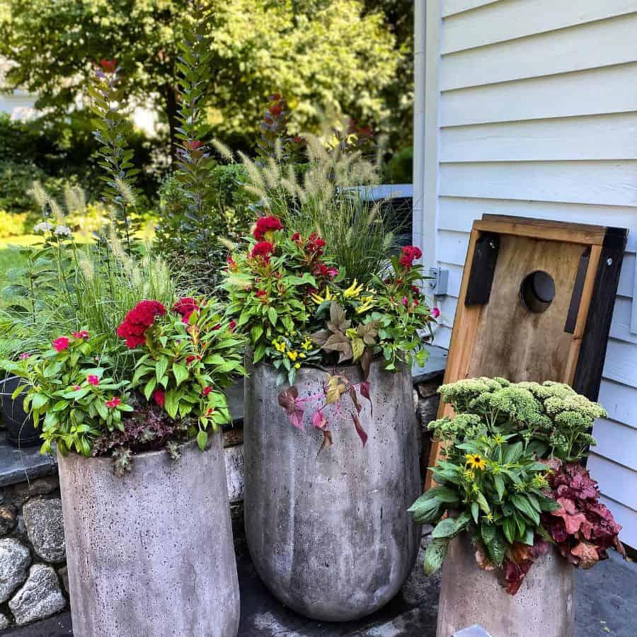 plant decor container garden ideas 2 outdoorscontained