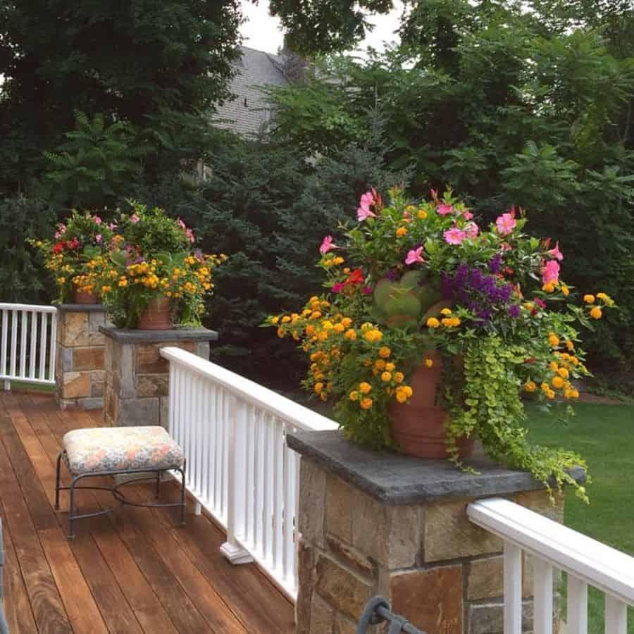 plant decor container garden ideas superiorflowergirl