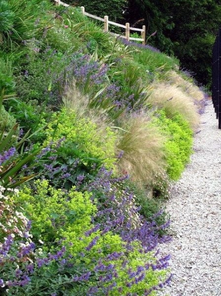 Plant Flowers Gravel Walkway Slope Landscape Ideas