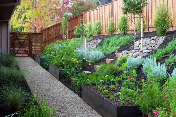 Plant Ideas Sloped Hill Landscaping
