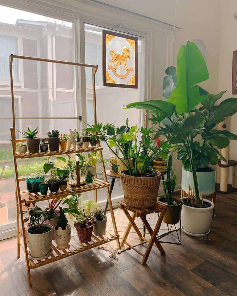 plant shelf plant stand indoor garden ideas jesduh