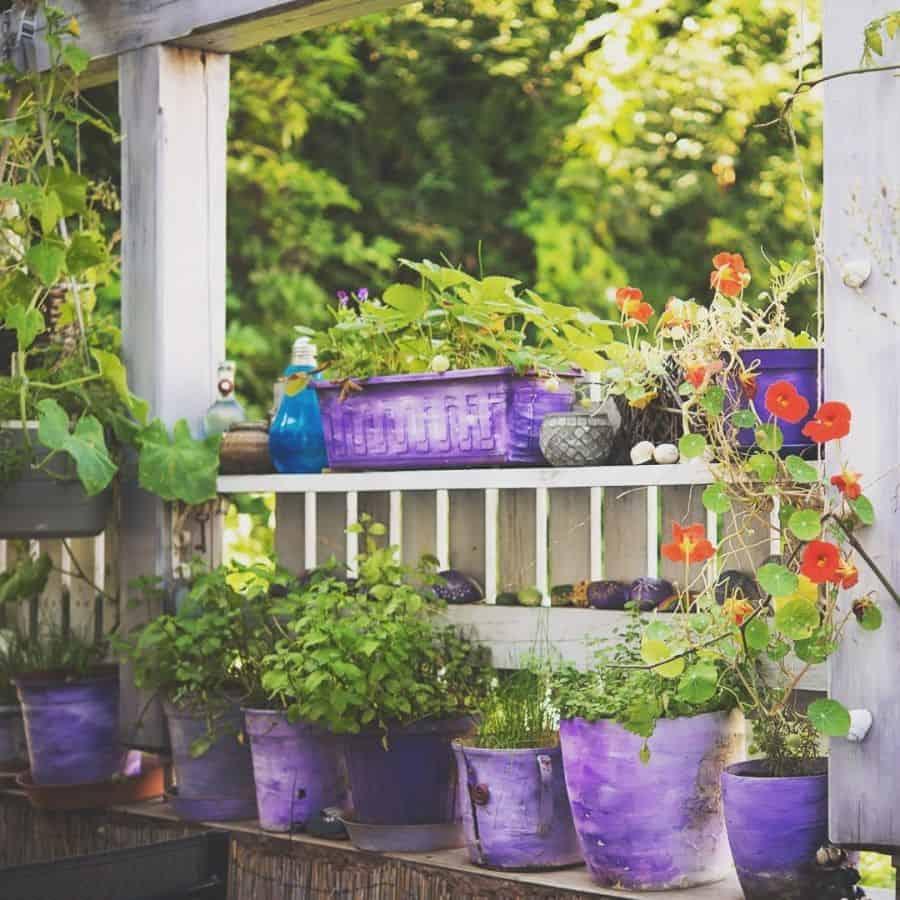 planter ideas container garden ideas sita_garden