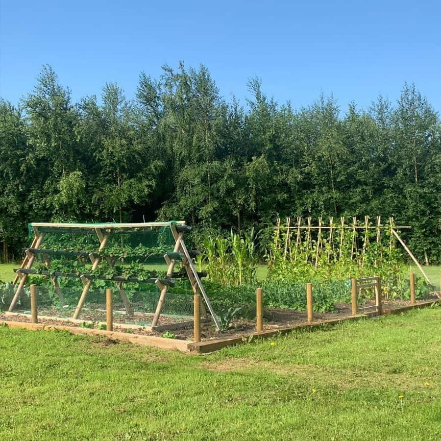 planter ideas vegetable garden ideas willowood.uk