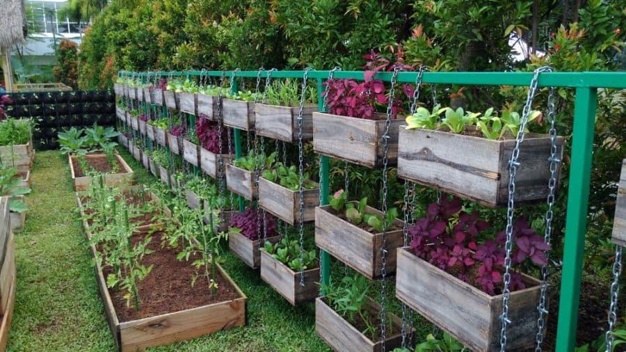 planter ideas vegetable garden ideas
