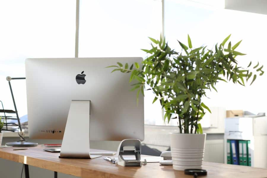 Plants And Planters Cubicle Decor 2