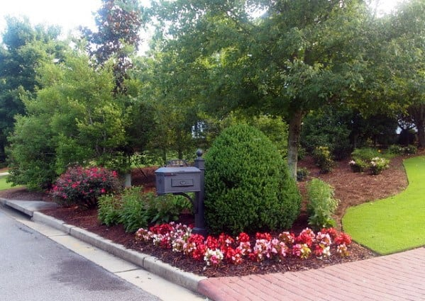 Plants For Mailbox Landscaping Ideas