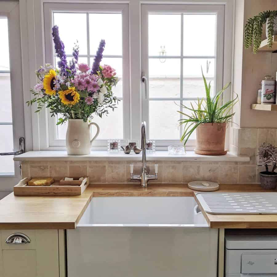plants kitchen window ideas kelly_prouton