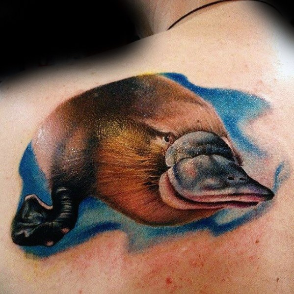 Platypus Tattoo Design Ideas For Males On Upper Back