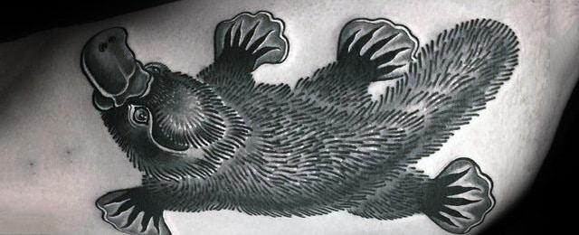 Platypus Tattoo Designs For Men