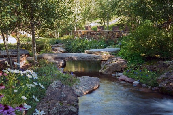 Pond Features Ideas