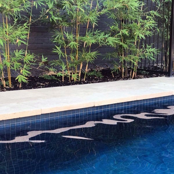 Pool Tile Design Ideas