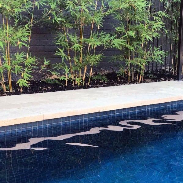 Pool Tile Design Ideas