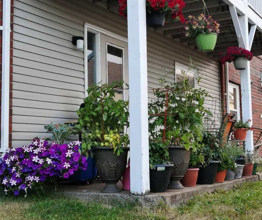 porch container garden ideas uberwench