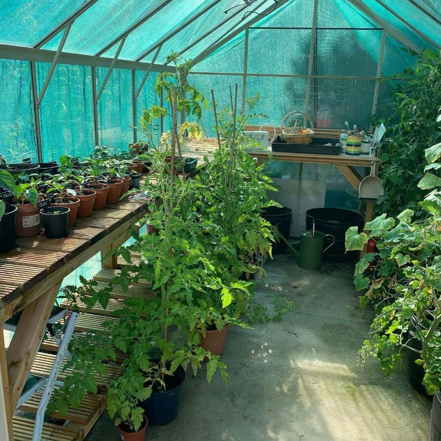 potting shed greenhouse ideas jpcountrylife
